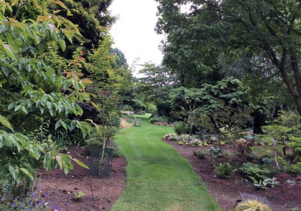 Garden 0720 2